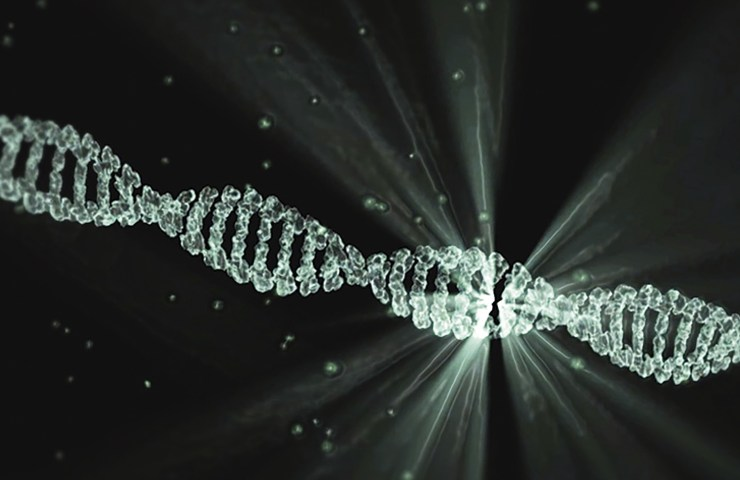Nanomateriali super resistenti