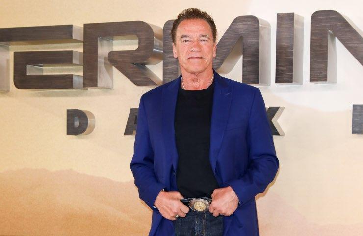 Schwarzenegger Netflix