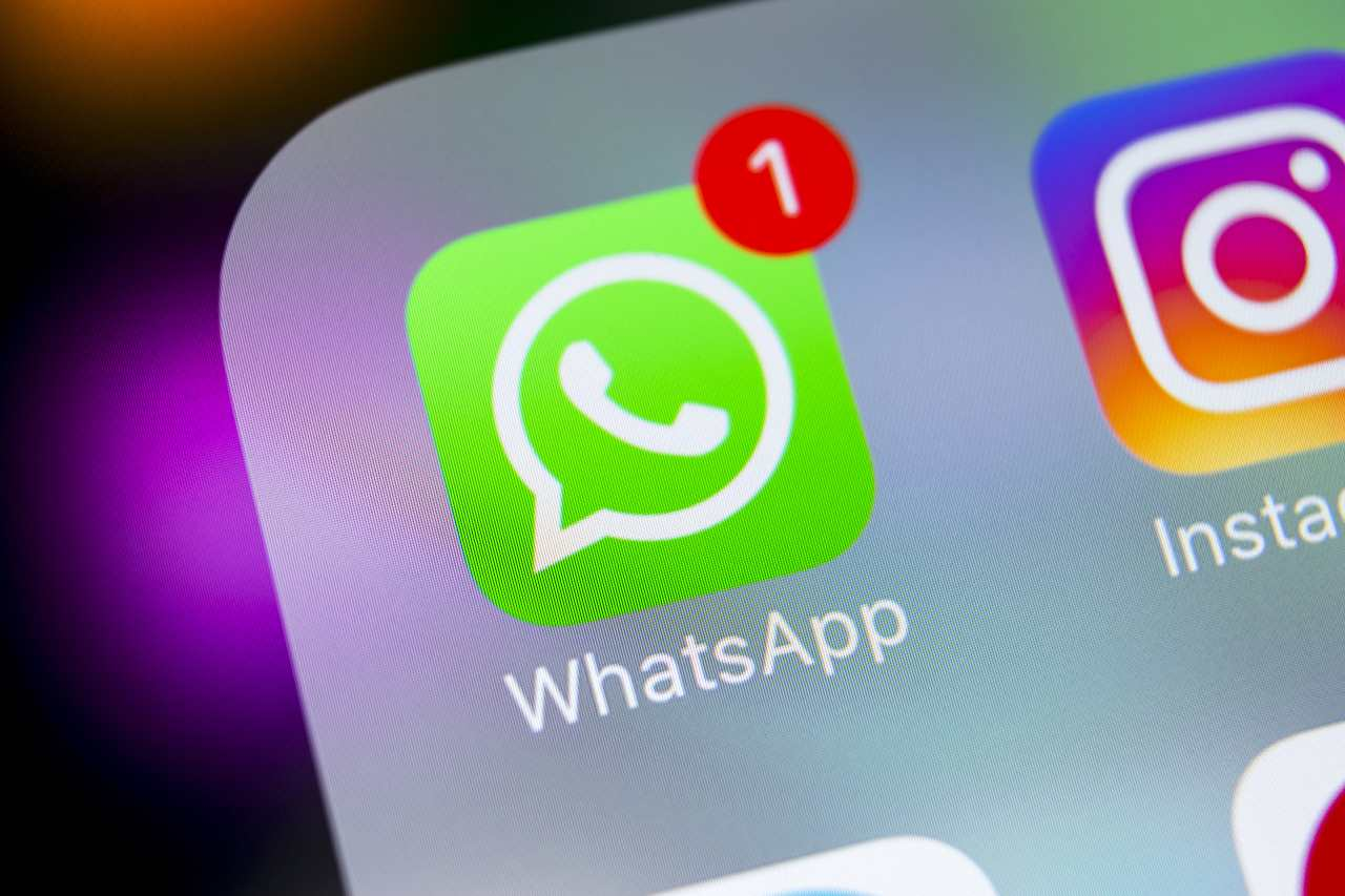 Notifica whatsapp (Adobe Stock)