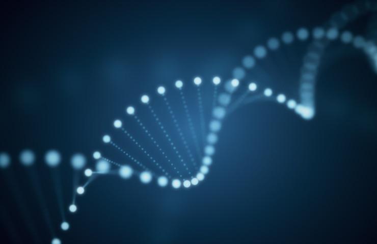 DNA (Adobe Stock)