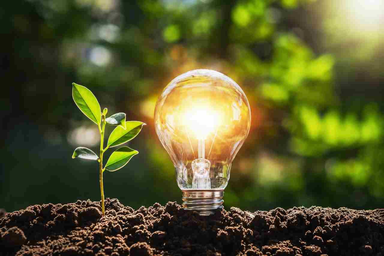 Energia green (Adobe Stock)